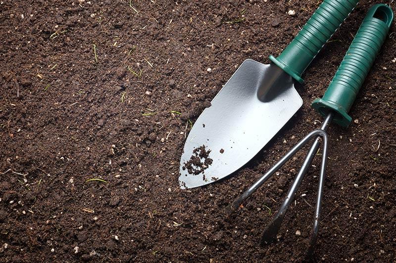 paruošti sodą ir dirvą pavasariui