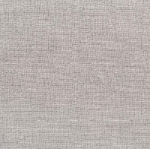 Aspen 04 light grey (grupė 1)