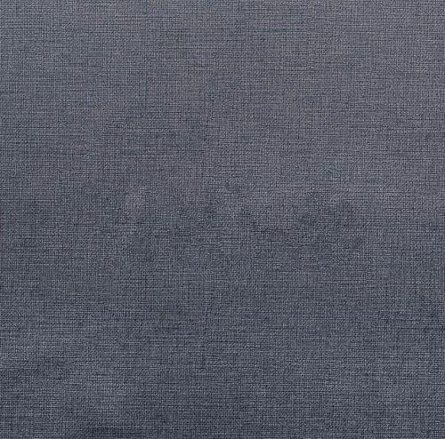 Aspen 08 graphit (grupė 1)