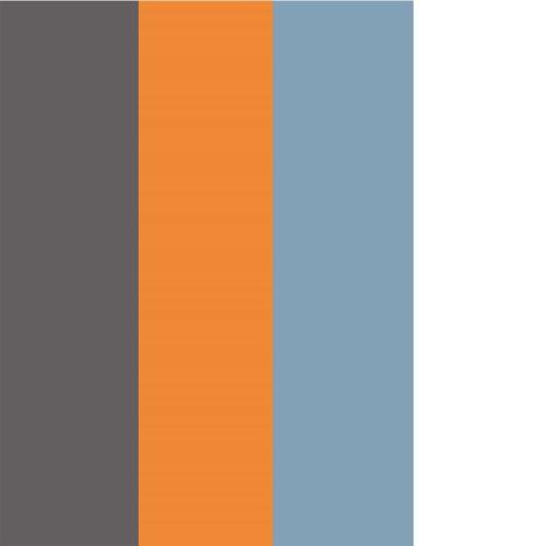 C174 korpusas:uni volfram pilka / apelsino / žydra priekis: balta