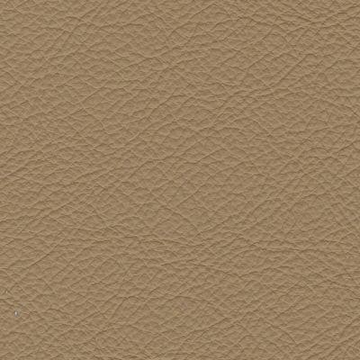 Cappucino (oda madras)