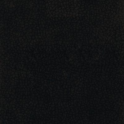 Juoda (Carabu 92)